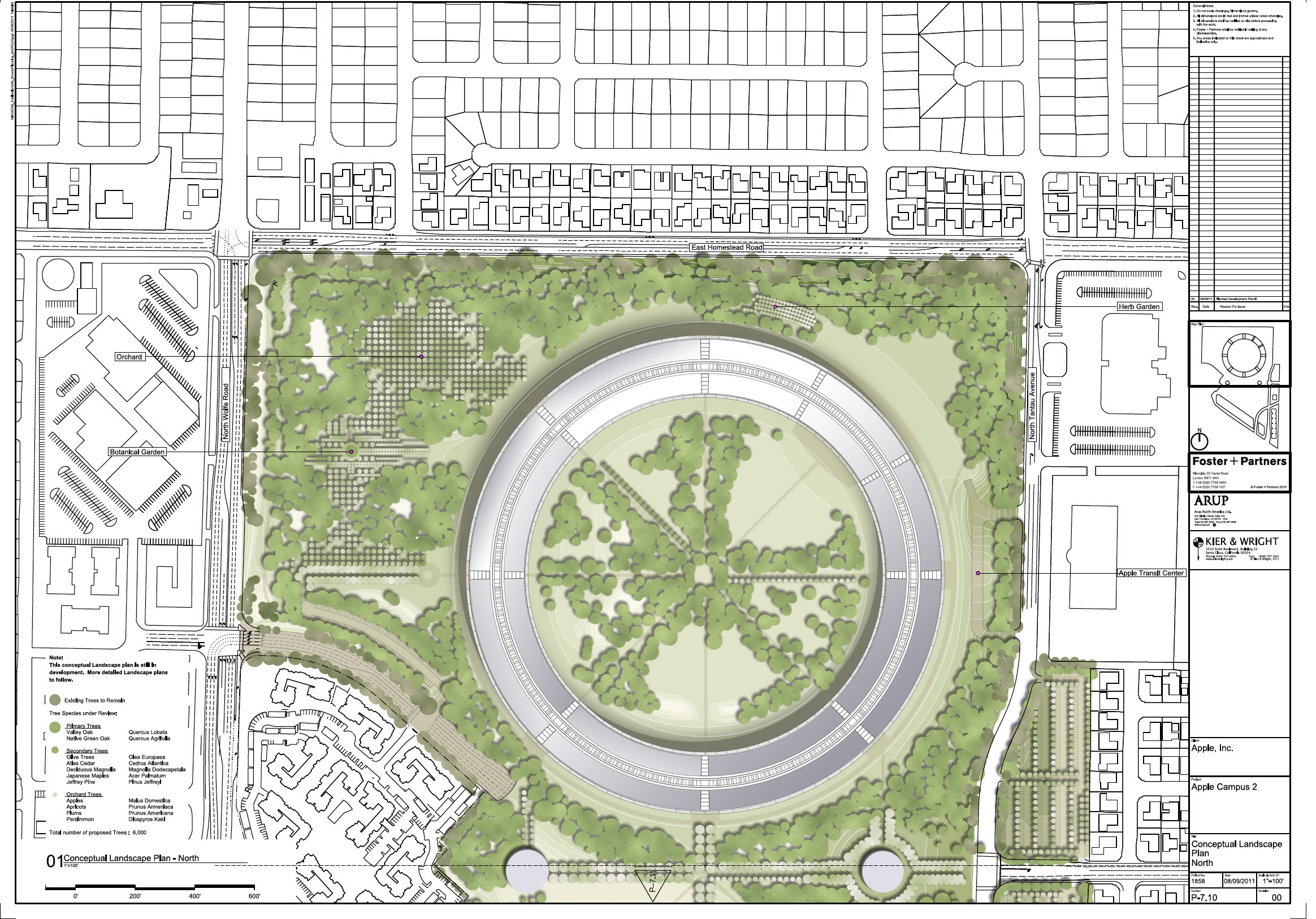 Site_Plan-Landscaping_Apple_Campus 2