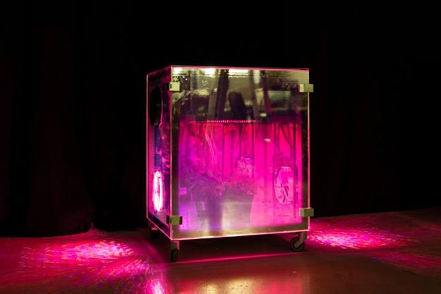Micro -Experimental-Growing