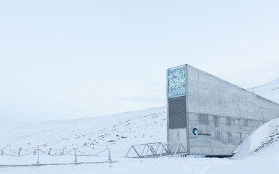 Arctic World Archive: un caveau alle Svalbard protegge i dati