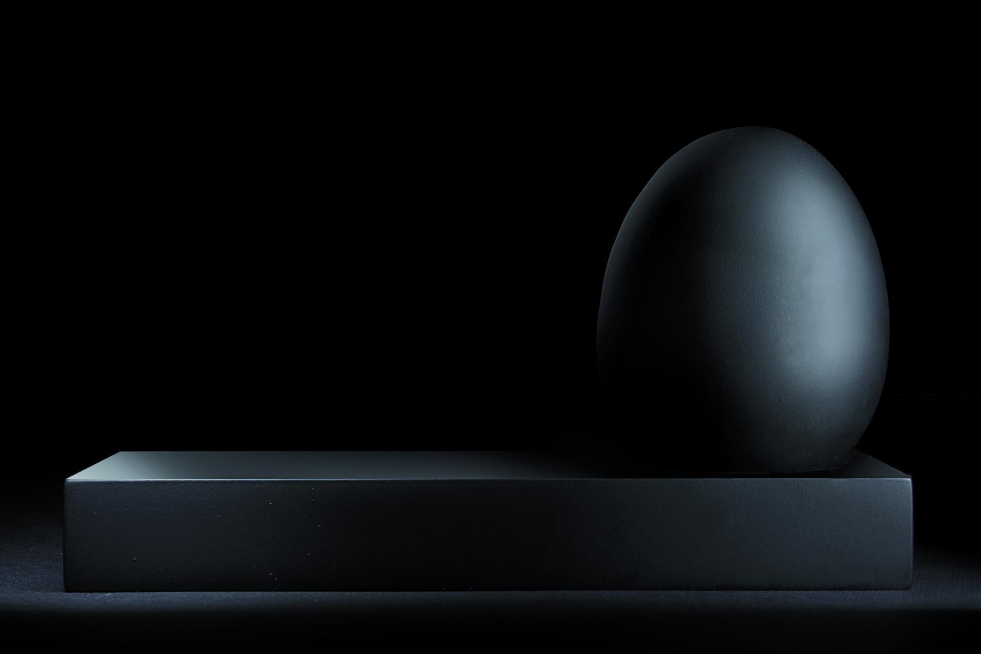 Ego, la memoria privata della nostra vita digitale (a forma di uovo)