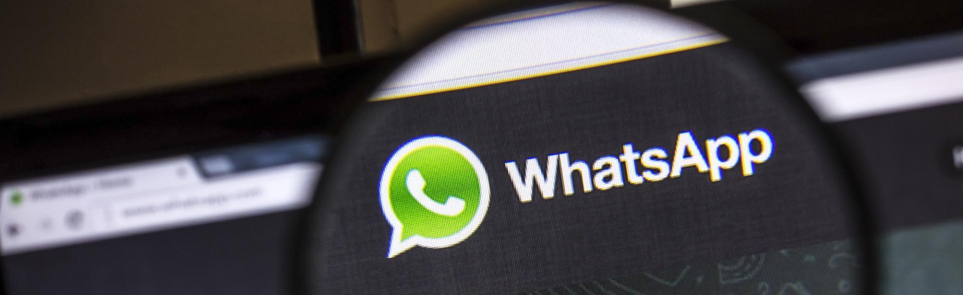 WhatsApp account verificati per il business
