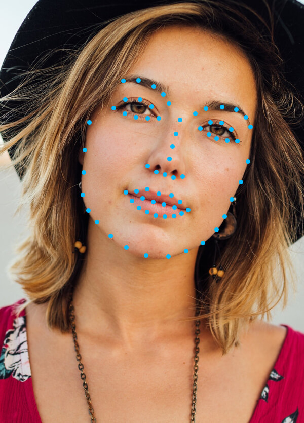prisma-face_landmarks
