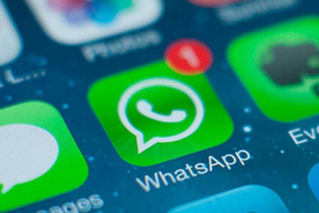 whatsapp account business verificati avvisi di spam