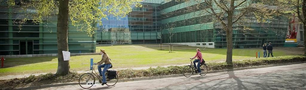 Università di Radboud - programma di laurea magistrale in Intelligenza Artificiale
