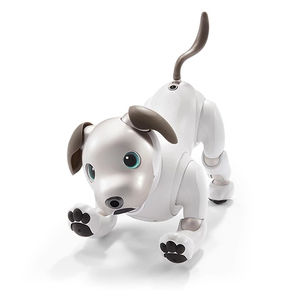 aibo robot cane sony