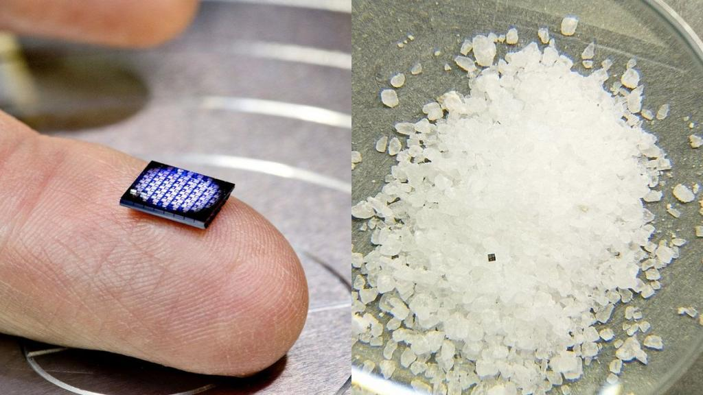 Ecco il computer che sta in un granello di sale