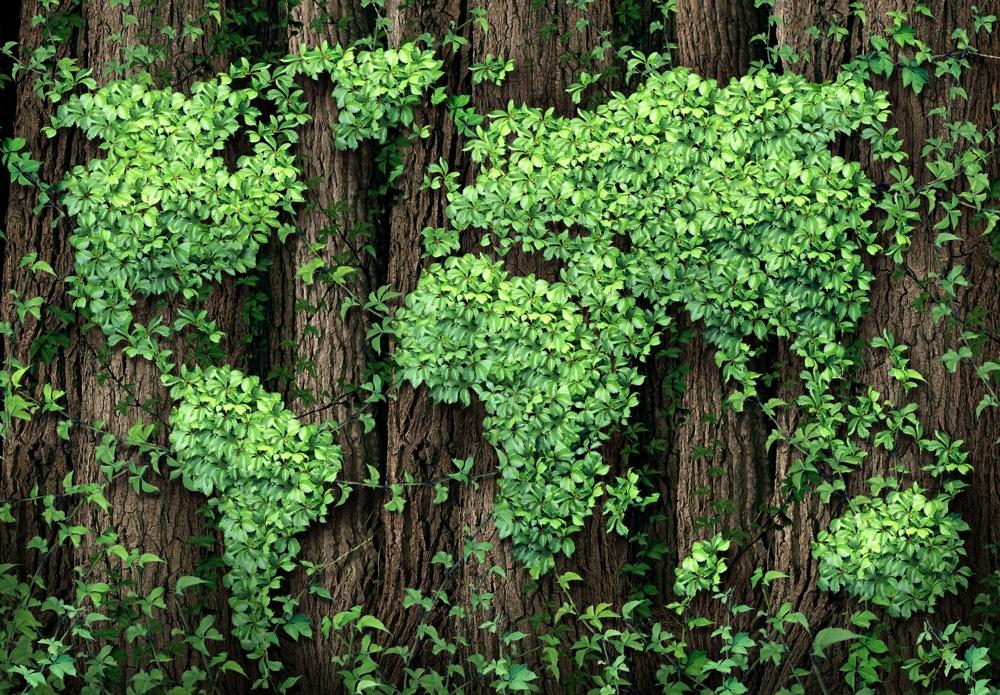 Aziende green italiane