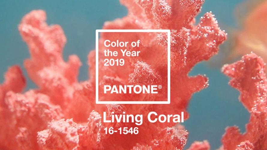 Colore Pantone dell'anno 2019 Living Coral