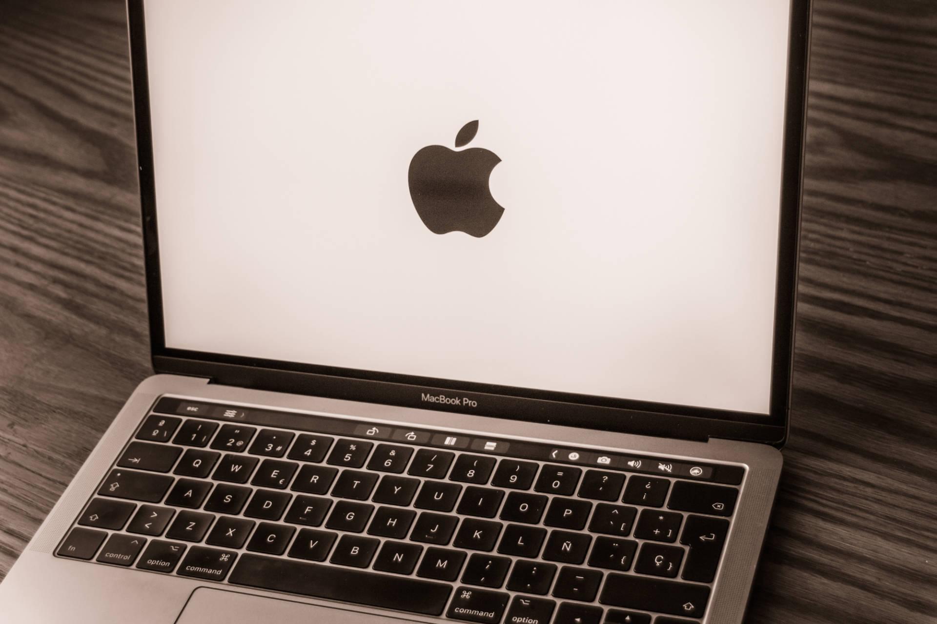 MacBook 2019: quale scegliere?