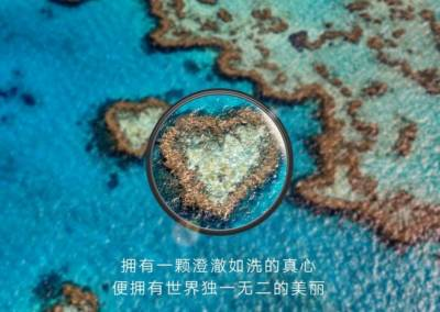 Zoom Huawei P30 Isole