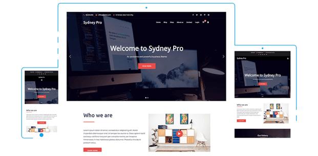 Migliori Temi WordPress: Sydney