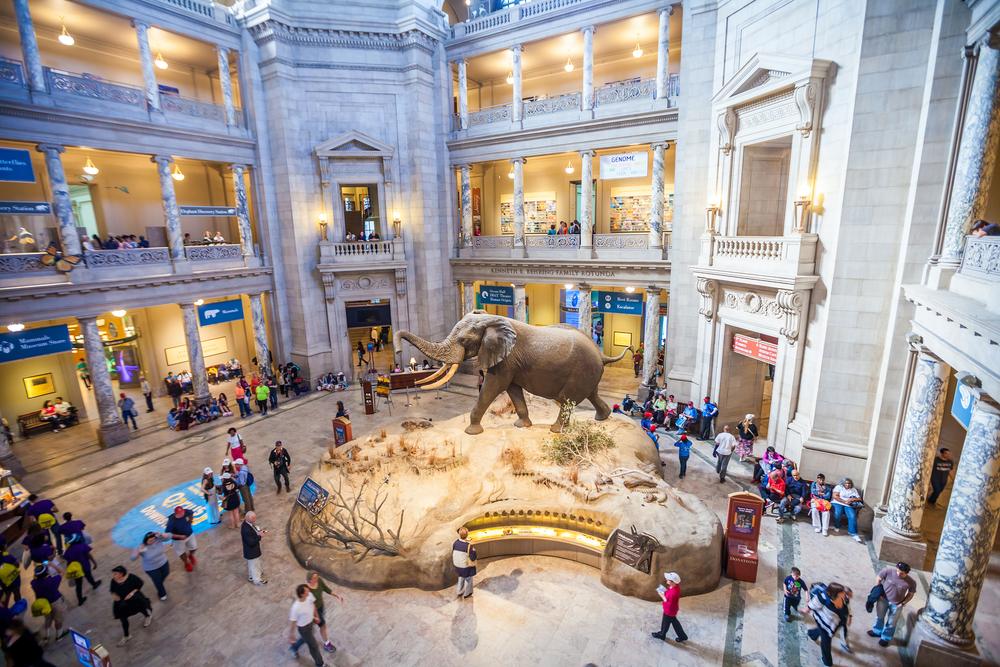 Migliori musei del mondo
