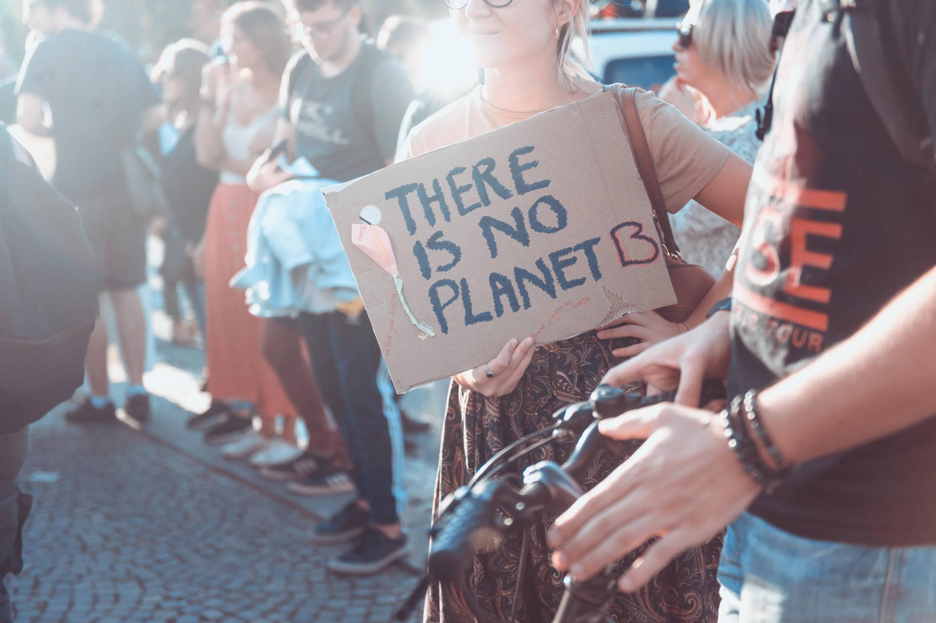 Fridays For Future Italia: lo sciopero per il clima invade Twitter