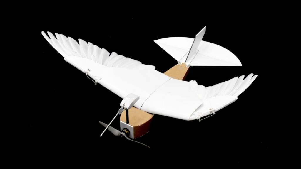 drone con ali a piuma di piccione