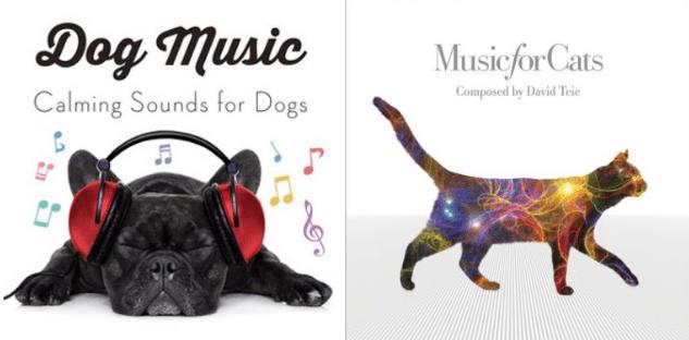 musica per cani e gatti