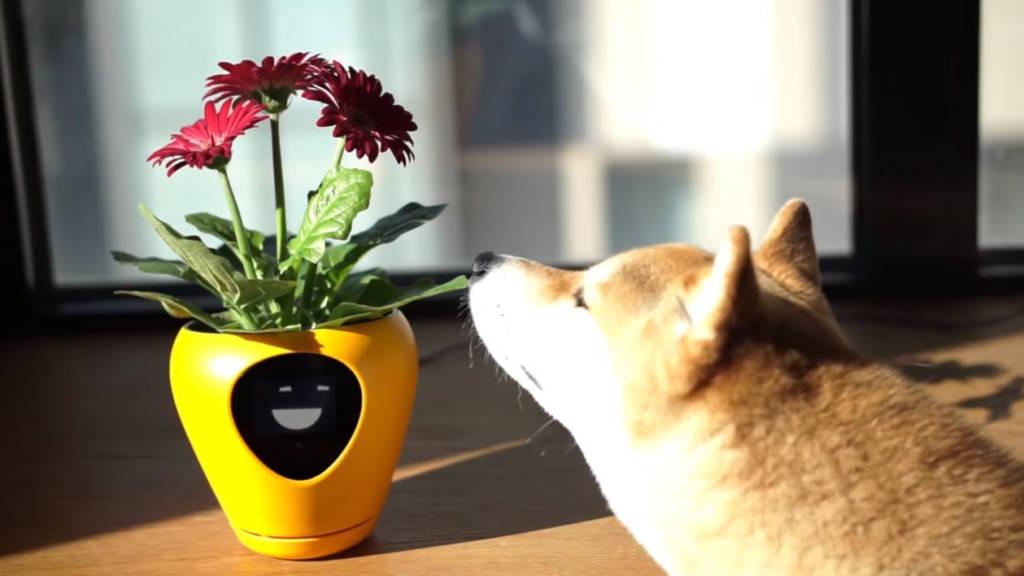 Vaso fiori tech