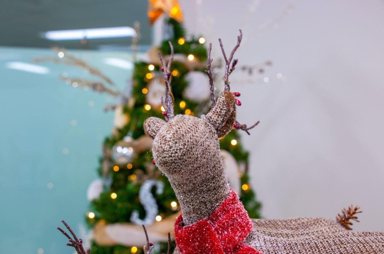 Quali saranno le regole per dicembre e Natale? Le prime indiscrezioni