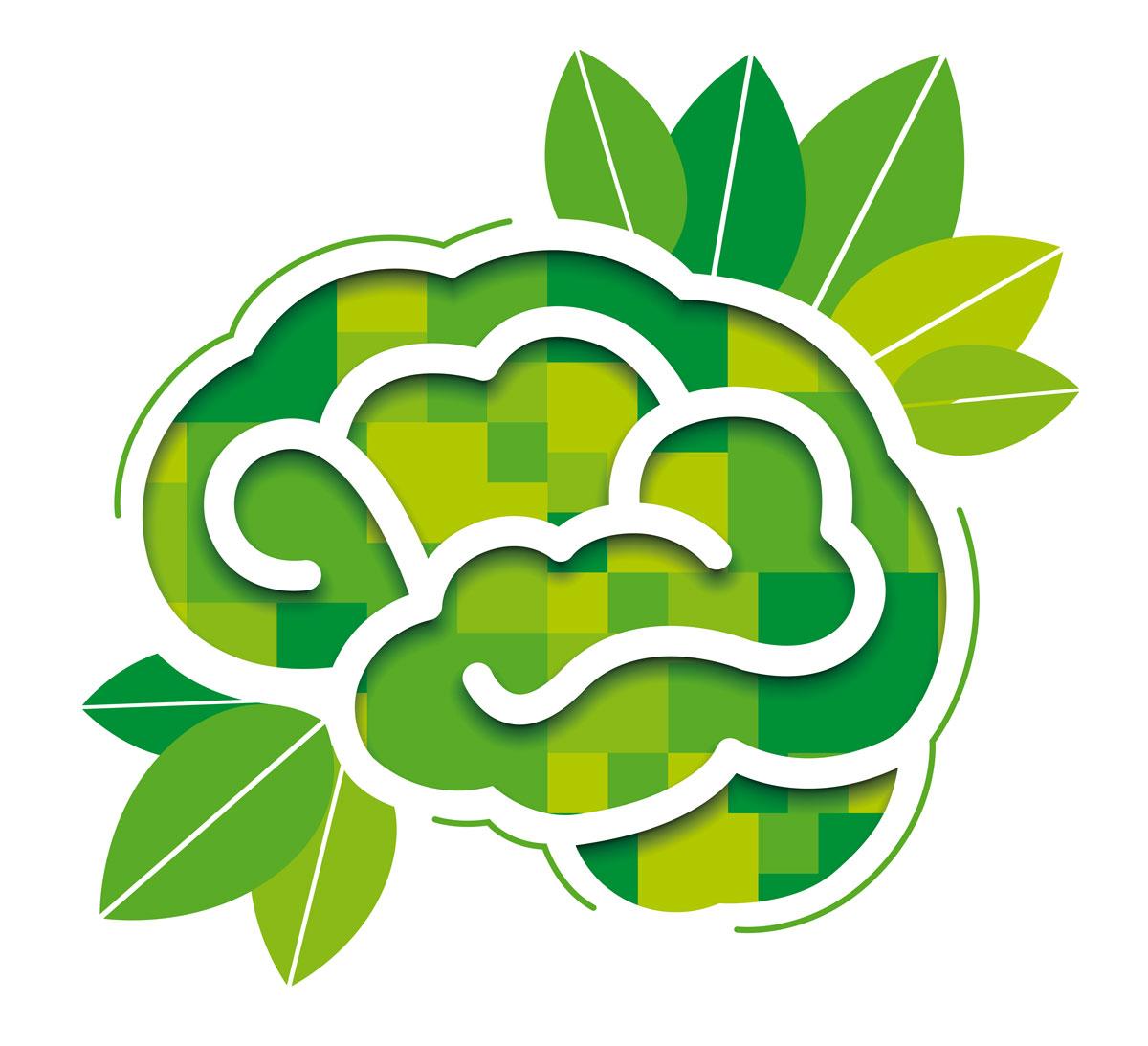 L'intelligenza della natura e come copiarla
