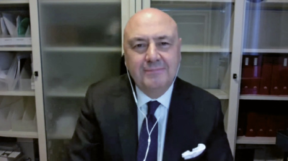 Carlo Alberto Carnevale Maffè, economista