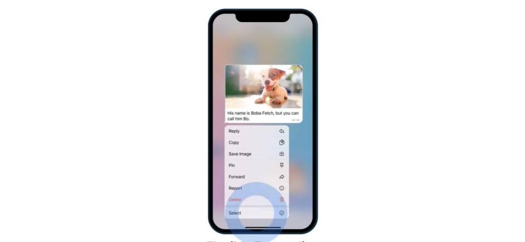 telegram 8.0 nuova funzione privacy